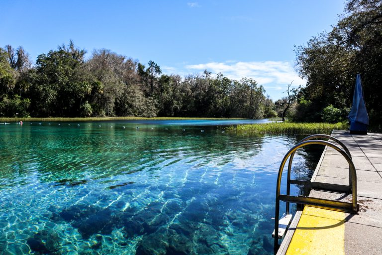 Exploring Wild Florida at the Rainbow Springs State Park